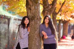 Two teen girls standing next to maple tree in autumn Stock Image