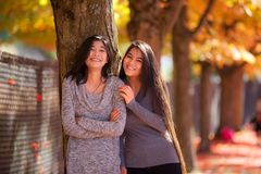 Two teen girls standing next to maple tree in autumn Stock Photography