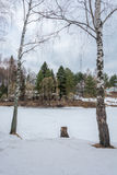 Two birch trees and a river. Royalty Free Stock Photos