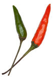 Two Bird's Eye Chillies Royalty Free Stock Image