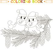 Two birds in hats sitting on fir branches with cones, anti stress black and white Stock Images