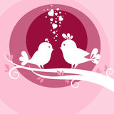 Two birds in love Stock Photos