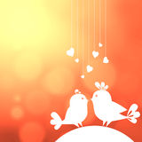 Two birds in love Stock Photography