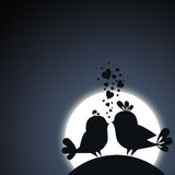 Two birds in love Royalty Free Stock Photos