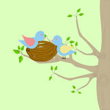 Two birds and a nest. On a tree stock illustration