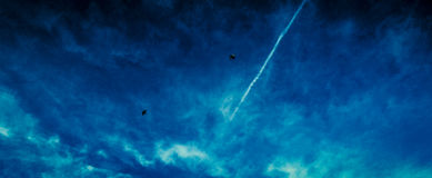 Two Birds. This shot is of the morning blue sky with an aircraft contrail and two birds in-flight Royalty Free Stock Photography
