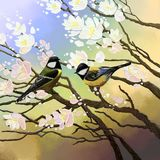 Two birds sit on the branches of a cherry blossom. royalty free illustration