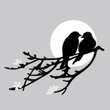 Two birds. Is sitting on a branch Royalty Free Stock Photo