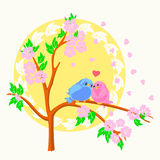 Two birds sitting on the branch. Two birds in love sitting on the branch with the sun on the background Stock Photos