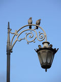 Two Birds on street lamp Royalty Free Stock Images