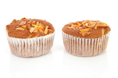 Two biscuit cupcakes with nuts Royalty Free Stock Photos