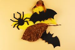 A two black bats and black spider with autumn leaves. New era of autumn. Happy halloween. Halloween decoration. Orange background royalty free stock images