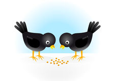 Two black birds. On a snow Royalty Free Stock Photos
