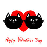 Two black cat head couple family icon. Red heart. Cute funny cartoon character. Happy Valentines day Greeting card. Kitty Whisker. Baby pet collection. White Stock Photo