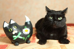 Two black cat toy cat and real cat on the table Stock Images