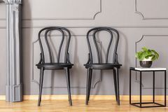 Two black chairs standing next to marble end table with fresh pl. Ant in grey living room interior with molding on the wall stock image