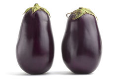 Two black eggplants Royalty Free Stock Images