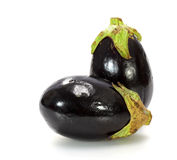 Two black eggplants on white Stock Images