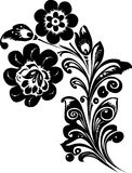 Two black flowers Stock Images