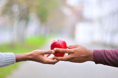 Two black hands keeping a red apple. An image of two black hands, giving or receiving an apple stock photo