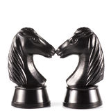 Two Black Horses Stock Images