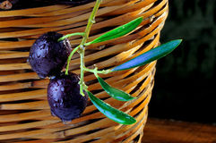 Two black olives Stock Images