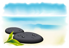 Two black pebbles with fresh leaf. Royalty Free Stock Photos