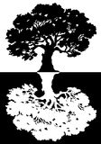 Two black and white trees. Vector Stock Images