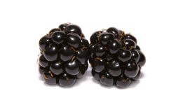 Two  blackberries Royalty Free Stock Images
