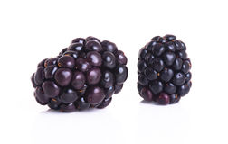Two blackberry  on a white Royalty Free Stock Photography