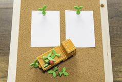 Two blank papers with green leaf pin and orange truck with pins. On cork board in Thailand Royalty Free Stock Photography