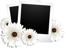 Two blank photos and flowers Stock Photography