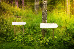Two blank signs in the forest Royalty Free Stock Image