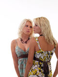 Two blond sisters in summer dresses. Two attractive sisters in summer dresses Stock Photo