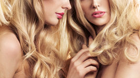 Two blond women in a beauty salon. Two attractive blond women in a beauty salon Royalty Free Stock Photos