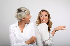 Two blond women smiling. Two young blonde women having fun Royalty Free Stock Images