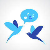 Two blue birds, one singing Royalty Free Stock Images
