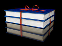 Two blue books Royalty Free Stock Photography