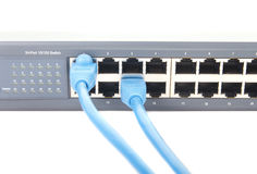 Two Blue Cat-5 Cables Plugged into Network Switch Royalty Free Stock Photo