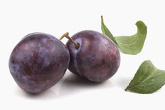 Two blue connected large ripe plums with leaves Stock Photo