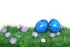 Two blue eggs. Nice decoration for Easter time Stock Image