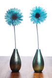 Two blue flowers. In vases on a white background stock photo