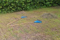 Two blue Rake and haystack. In the garden Royalty Free Stock Photography