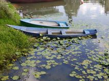 Two blue rowing boats moored in a lake with water lilies. A grass bank and reflections in the water Royalty Free Stock Photo