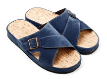 Two blue slippers Royalty Free Stock Image