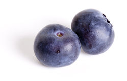 Two Blueberries Stock Image