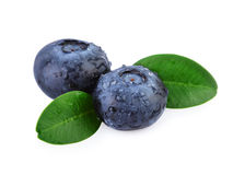 Two Blueberries Macro Closeup Stock Image
