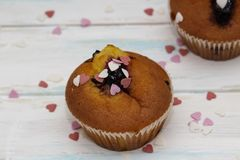 Two blueberries muffins or cupcakes on white texture royalty free stock photo