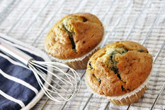 Two blueberry muffins Royalty Free Stock Images