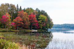 Two boats under red maple trees Stock Images